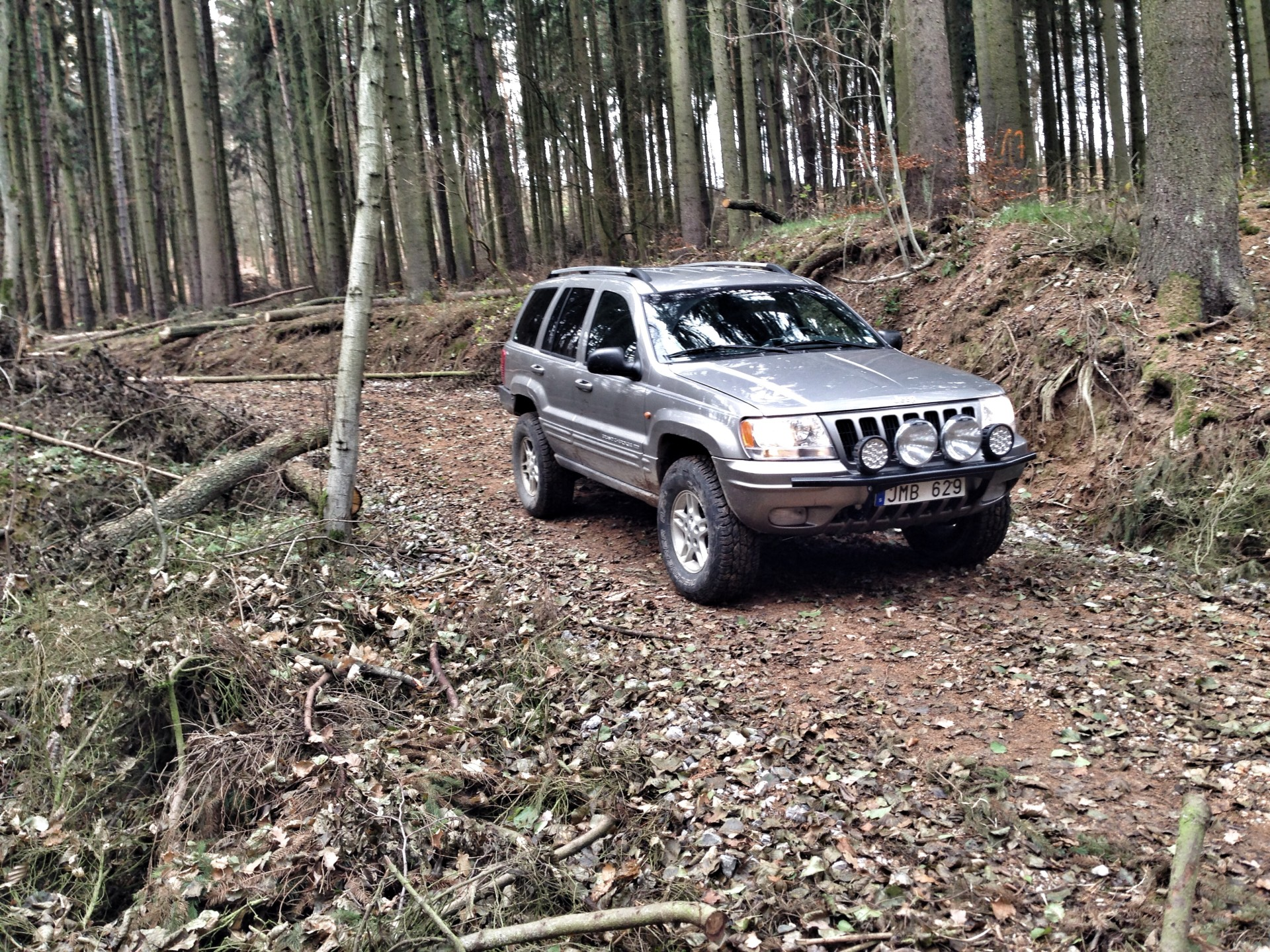 Jeep on lumber trail